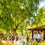Ceremony-through-the-trees