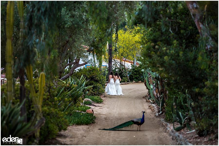 Leo-Carillo-Ranch-Wedding-11